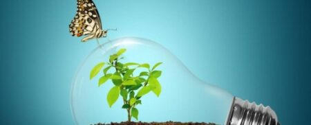 Noi prevederi importante pentru energia regenerabila